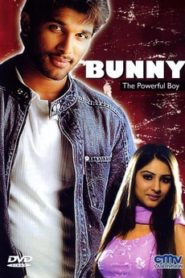 Bunny (2005) Hindi Dubbed Movie Watch HD Print Download