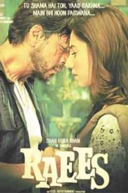 Raees (2017) Hindi