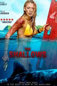 The Shallows (2016) Hindi Dubbed