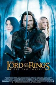 The Lord of the Rings The Two Towers (2002) Hindi Dubbed