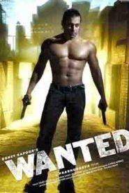 Wanted (2009) Hindi
