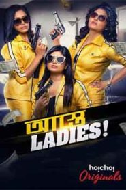 Astey Ladies (2019) Hindi Web Series