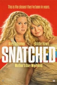 Snatched (2017) Hindi Dubbed