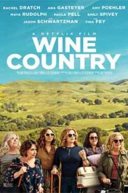 Wine Country (2019) Hindi Dubbed