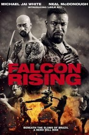 Falcon Rising (2014) Hindi Dubbed