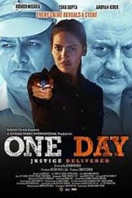 One Day Justice Delivered (2019)