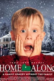 Home Alone (1990) Hindi Dubbed