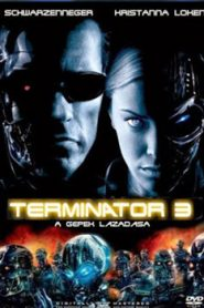 Terminator 3 Rise of the Machines (2003) Hindi Dubbed
