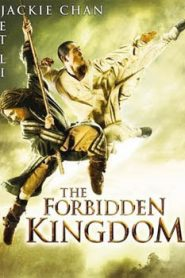 The Forbidden Kingdom (2008) Hindi Dubbed