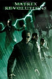 The Matrix Revolutions (2003) Hindi Dubbed