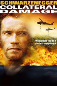 Collateral Damage (2002) Hindi Dubbed