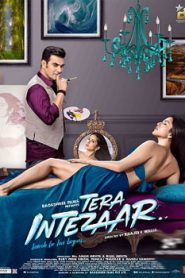 Tera Intezaar (2017) Hindi