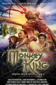 The Monkey King (2014) Hindi Dubbed