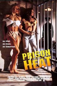 Prison Heat (1993) Hindi Dubbed