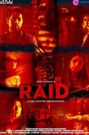 Raid (2019) Hindi Web Series