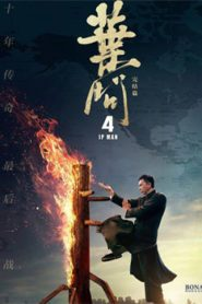 Ip Man 4 The Finale (2019) Hindi Dubbed