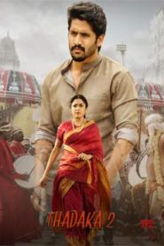 Thadaka 2 (2017) South Hindi Dubbed