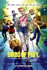 Birds of Prey (2020) Hindi Dubbed