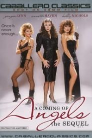 Coming Of Angels 2 (1985) Classics Movie