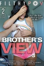 Step Brother's View 3 (2019)