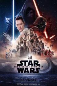 Star Wars The Rise of Skywalker (2019) Hindi Dubbed