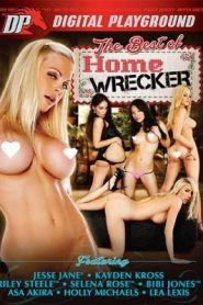 The Best Of Homewrecker (2016)