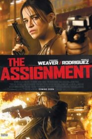 The Assignment (2016) Hindi Dubbed