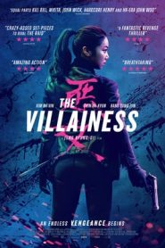 The Villainess (2017) Hindi Dubbed