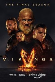 Vikings (2020) Hindi Season 6 Part 2 Complete