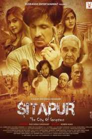 Sitapur The City of Gangsters 2021 Hindi
